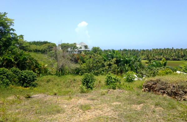 Lot in La Barbacoa, Dominican Republic