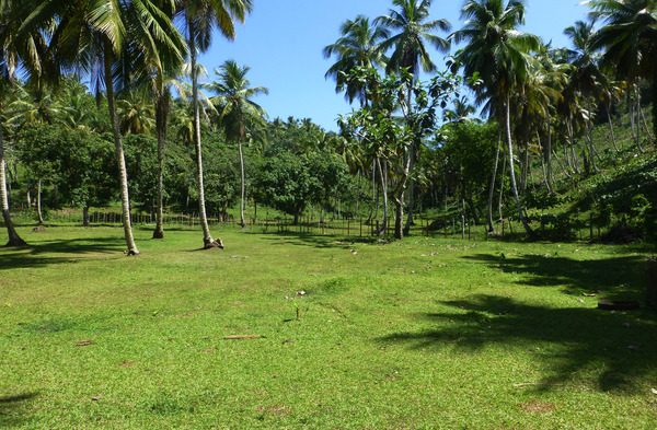 Lot in El Limón, Dominican Republic