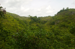 Lot in Las Terrenas, Dominican Republic