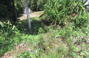 Lot in Las Ballenas, Dominican Republic